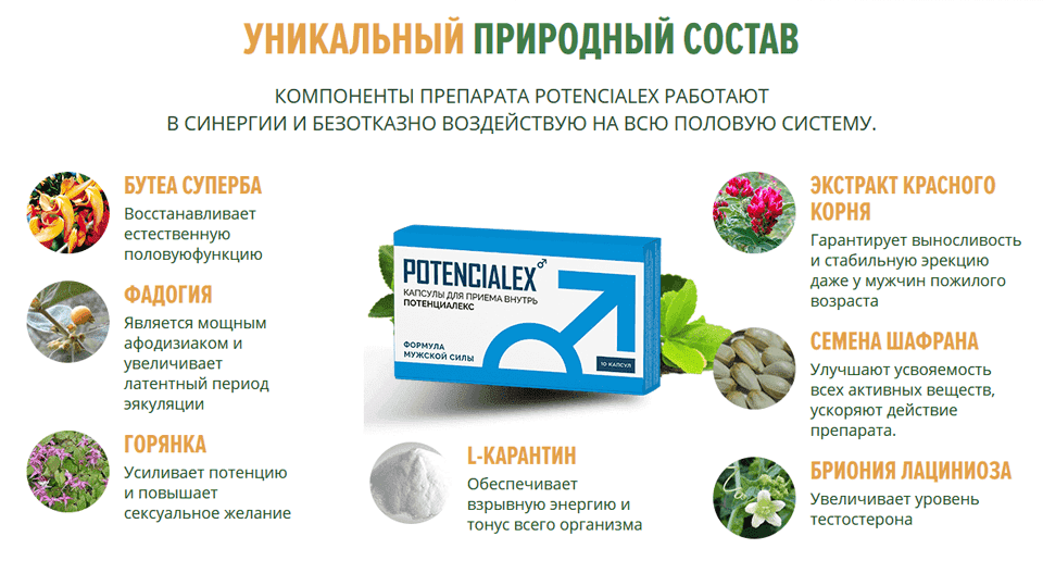 Состав препарата Potencialex